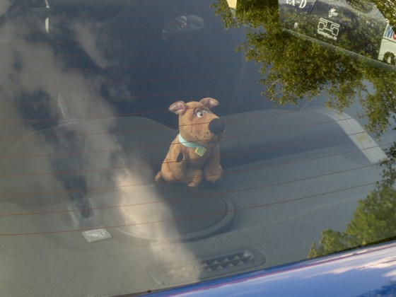 SCOOBY!!!
