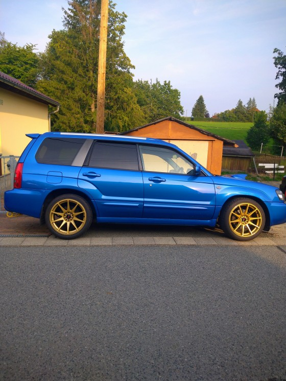 Fozzy get´s low